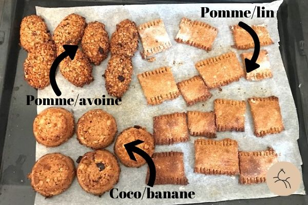 recettes de bonbons maison pour les chevaux