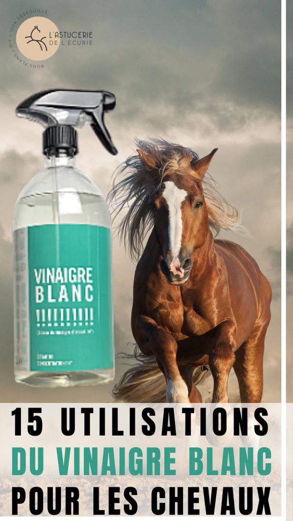 vinaigre blanc cheval