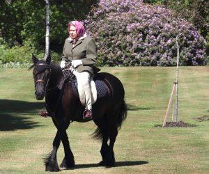 Elisabeth d'Angleterre à cheval à 95 ans sur un cheval noir