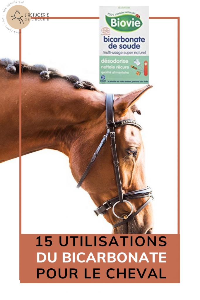 bicarbonate usage cheval