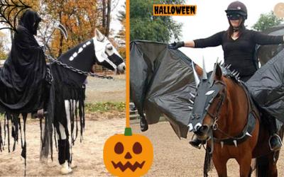 Halloween : 8 Déguisements et 15 Idées d'Activités pour les Poney-Clubs.