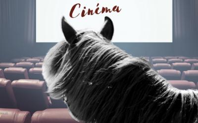 15 Films pour Ceux qui Aiment les Chevaux (à regarder au chaud sous son plaid).
