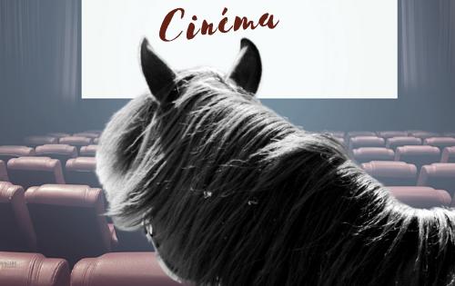 15 films avec un cheval