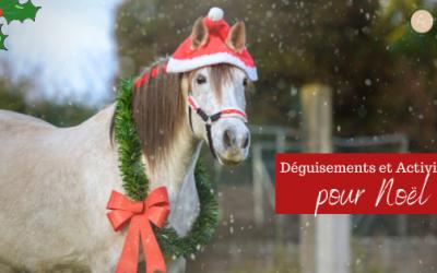 Noël à Cheval : 5 Déguisements et 15 Idées d'Activités pour les Poney-Clubs.