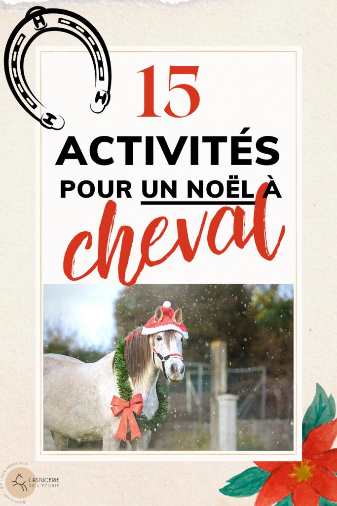 noel poney activités