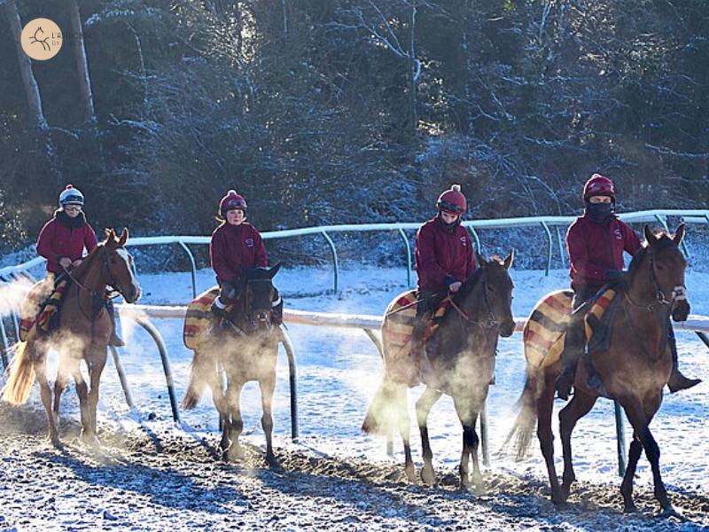 faire de l'équitation en hiver, astuces anti froid