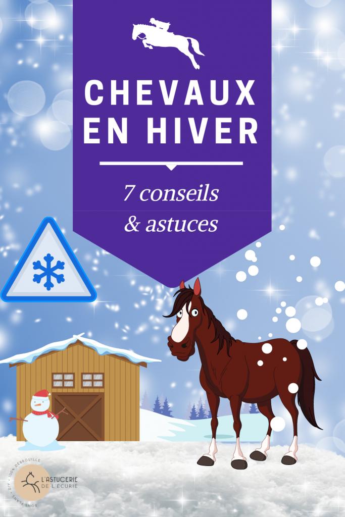 chevaux en hivers, cheval dehors en hiver, cheval raide en hiver, monter a cheval en hiver, comment couvrir son cheval en hiver, le cheval en hiver, cheval froid hiver, monter son cheval en hiver, cheval paddock hiver