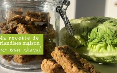 Tuto : La Recette des Friandises sans Sucre pour Mon Cheval