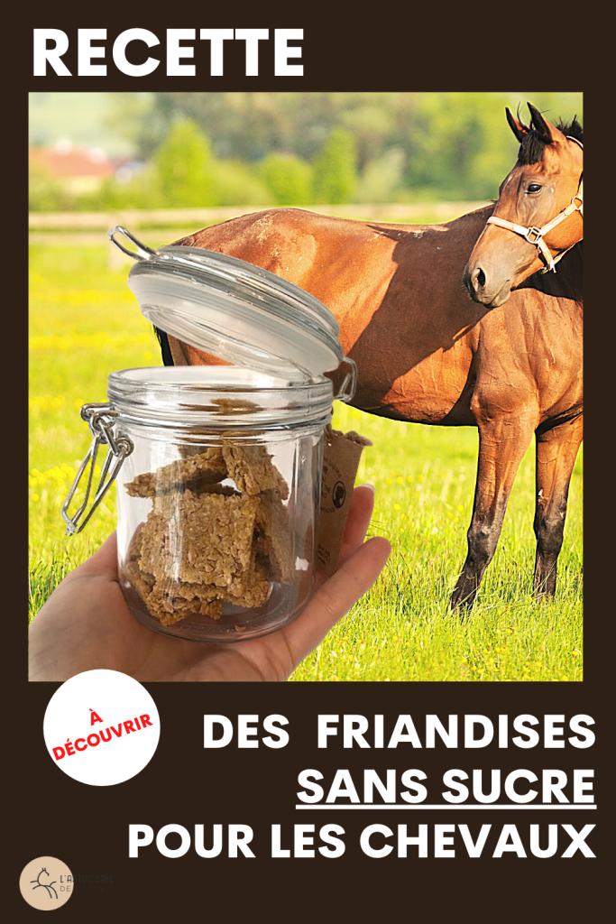 comment préparer des friandises maison  pour son cheval