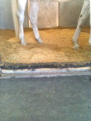 balai anti-copeaux box cheval