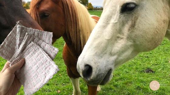 comment fabriquer des lingettes pour mon cheval