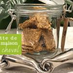 recette friandise maison cheval pomme/lin