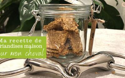 Biscuit Maison pour Mon Cheval : la RECETTE Facile et Sans Sucre