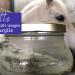 recette-pommade-argile-cheval