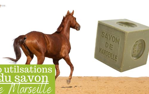 savon marseille pour les chevaux