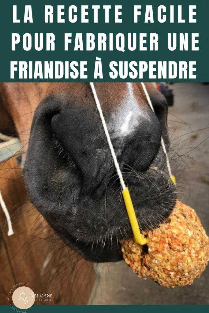 Friandise maison pour les chevaux recette facile et sans sucre