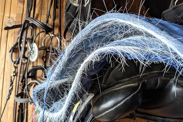 tapis de selle plein de poils au printemps