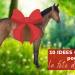 10 idées cadeaux maman cheval