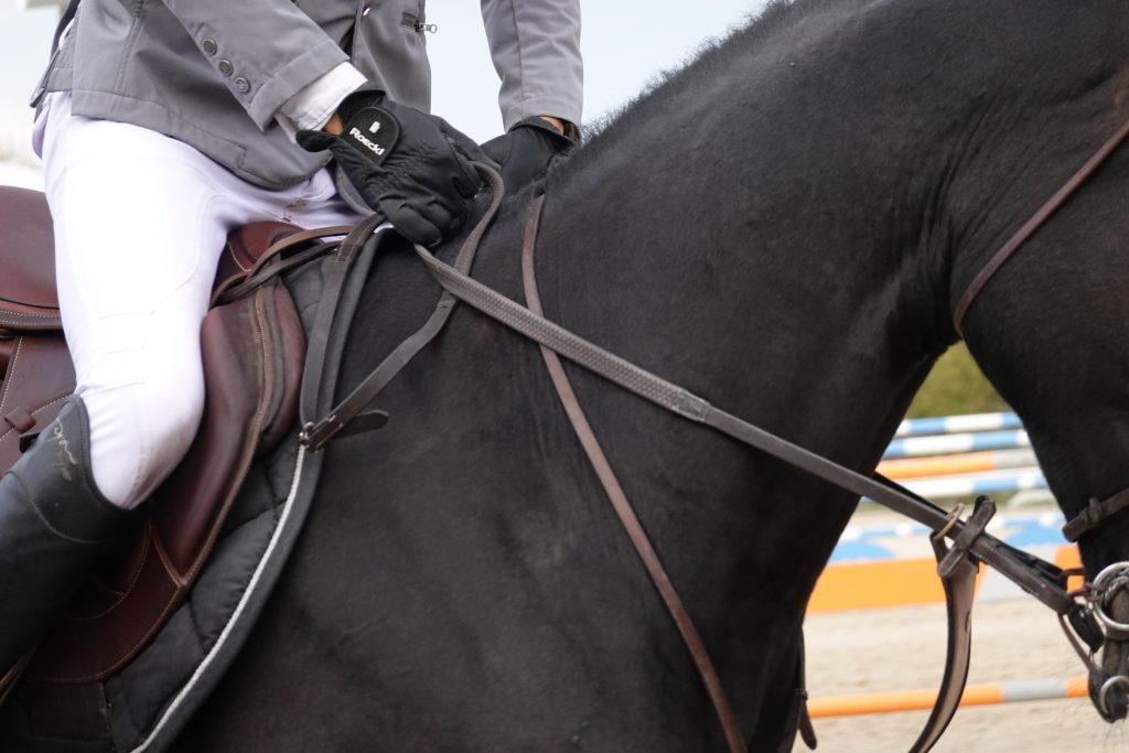 Cheval noir en gros plan avec cavalière
