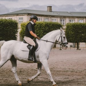 Formation plat indispensables Jeanne-Charlotte Thoby