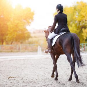 formation dressage Jeanne-Charlotte Thoby
