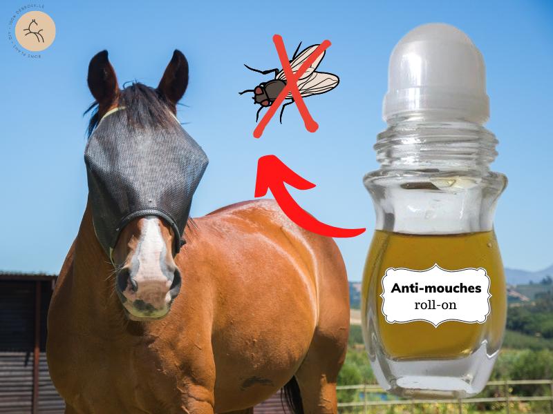 Cheval avec anti-mouches fait maison recette facile à l'huile de neem